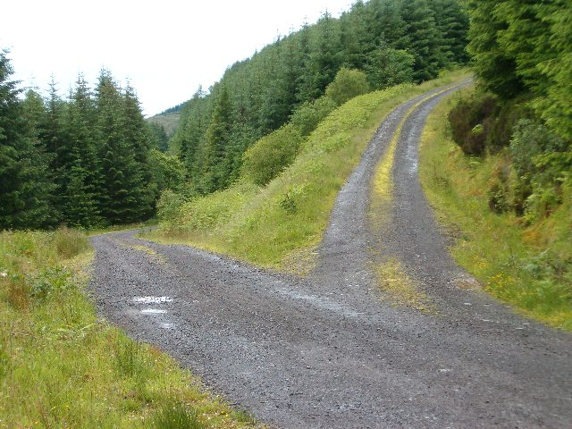 decisions_decisions_-_geograph_org_uk_-_191544